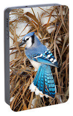 Portrait Of A Blue Jay Portable Battery Charger by Bill Wakeley