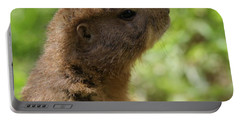 Prairie Dog Portrait Portable Battery Charger by Dan Sproul