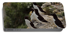 Razorbill Cliff Portable Battery Charger by Dreamland Media