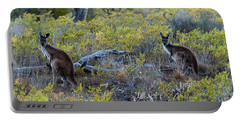 Red Kangaroo Macropus Rufus Portable Battery Charger by Panoramic Images