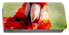 Red Macaw Portable Battery Charger by Pati Photography