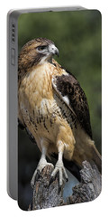 Red Tailed Hawk Portable Battery Charger by Dale Kincaid