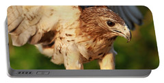 Red Tailed Hawk Hunting Portable Battery Charger by Dan Sproul