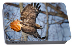Redtail Hawk Portable Battery Charger by Bill Wakeley