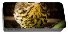Round Warbler Portable Battery Charger by Karen Wiles