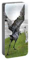 Sandhill Chasing Ibis Portable Battery Charger by Carol Groenen
