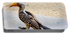Southern Yellow-billed Hornbill In Kruger National Park-south Africa Portable Battery Charger by Ruth Hager