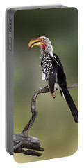 Southern Yellowbilled Hornbill Portable Battery Charger by Johan Swanepoel