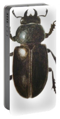Stag Beetle Portable Battery Charger by Ele Grafton