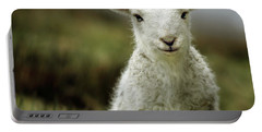 The Lamb Portable Battery Charger by Angel  Tarantella