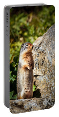 The Marmot Portable Battery Charger by Robert Bales