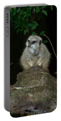 The Meerkat Portable Battery Charger by Chalet Roome-Rigdon