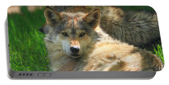 The Mexican Wolf Portable Battery Charger by Dan Sproul