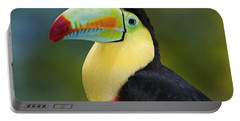 The Rainbow Bird.. Portable Battery Charger by Nina Stavlund