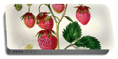 The Roseberry Strawberry Portable Battery Charger by Edwin Dalton Smith