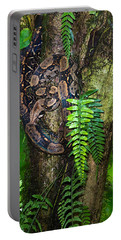 Tree Boa On A Tree, Sarapiqui, Costa Portable Battery Charger by Panoramic Images