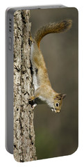 Tree Hugger Portable Battery Charger by Christina Rollo