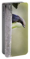 Tree Swallow Closeup Portable Battery Charger by Christina Rollo