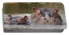 Two Hippopotamus Hippopotamus Amphibius Portable Battery Charger by Panoramic Images