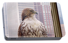 Urban Red-tailed Hawk Portable Battery Charger by Rona Black