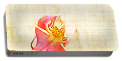 Vintage White Orchid Portable Battery Charger by Delphimages Photo Creations
