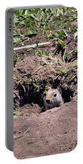 Ground Squirrel Portable Battery Charger by Dan Sproul