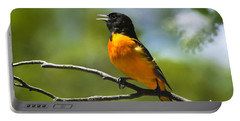 Wild Birds - Baltimore Oriole Portable Battery Charger by Christina Rollo