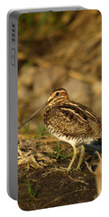 Wilson's Snipe Portable Battery Charger by James Peterson