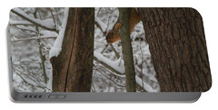 Winter Squirrel Portable Battery Charger by Dan Sproul