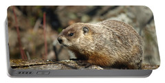 Woodchuck Portable Battery Charger by James Peterson