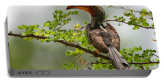 Yellow-billed Hornbill Portable Battery Charger by Bruce J Robinson