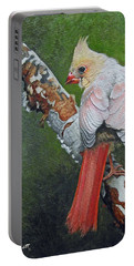 Young Cardinal  Portable Battery Charger by Ken Everett