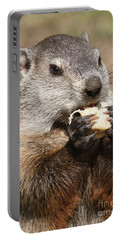 Animal - Woodchuck - Eating Portable Battery Charger by Paul Ward