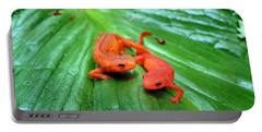Double Newt Portable Battery Charger by Art Dingo