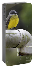 Grey-capped Flycatcher Portable Battery Charger by Heiko Koehrer-Wagner
