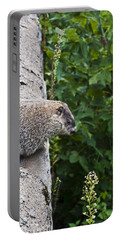 Groundhog Day Portable Battery Charger by Bill Cannon