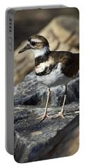 Killdeer Portable Battery Charger by Saija  Lehtonen