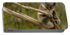 Koala At Work Portable Battery Charger by Bob Christopher