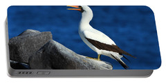 Nazca Booby Portable Battery Charger by Tony Beck
