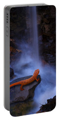 Newt Falls Portable Battery Charger by Ron Jones