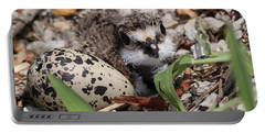 Killdeer Baby - Photo 25 Portable Battery Charger by Travis Truelove