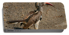 Red-billed Hornbill Portable Battery Charger by Bruce J Robinson