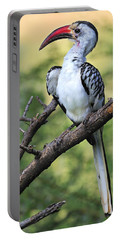 Red-billed Hornbill Portable Battery Charger by Tony Beck