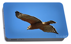 Red Shouldered Hawk In Flight Portable Battery Charger by Carol Groenen