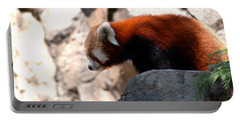 Valley Of The Red Panda Portable Battery Charger by LeeAnn McLaneGoetz McLaneGoetzStudioLLCcom