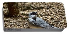 White-bellied Cuckoo-shrike Portable Battery Charger by Douglas Barnard