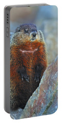 Woodchuck Portable Battery Charger by Tony Beck