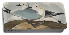 Kittiwake Gull Portable Battery Charger by John James Audubon