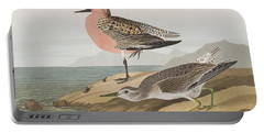 Red-breasted Sandpiper  Portable Battery Charger by John James Audubon