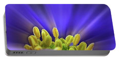 blue Shades - An Anemone Blanda Portable Battery Charger by John Edwards